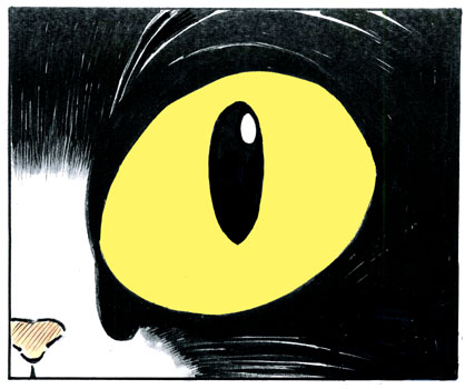 猫の目に1