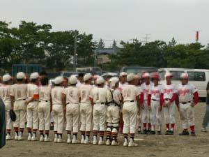 baseball791.jpg