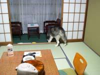 ryokan121.jpg