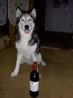 winepero.jpg