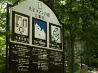 yumeji615.jpg