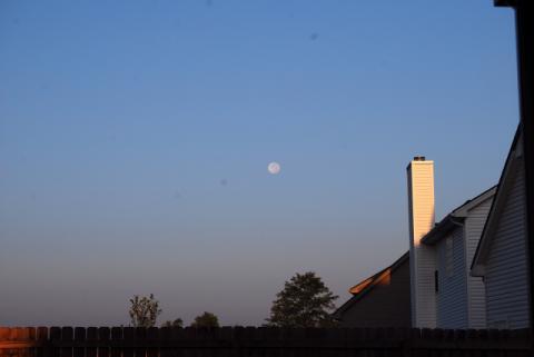 昨夜は満月でした