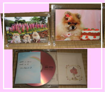 CDと写真