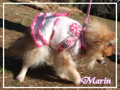 marin_20100125162902.jpg