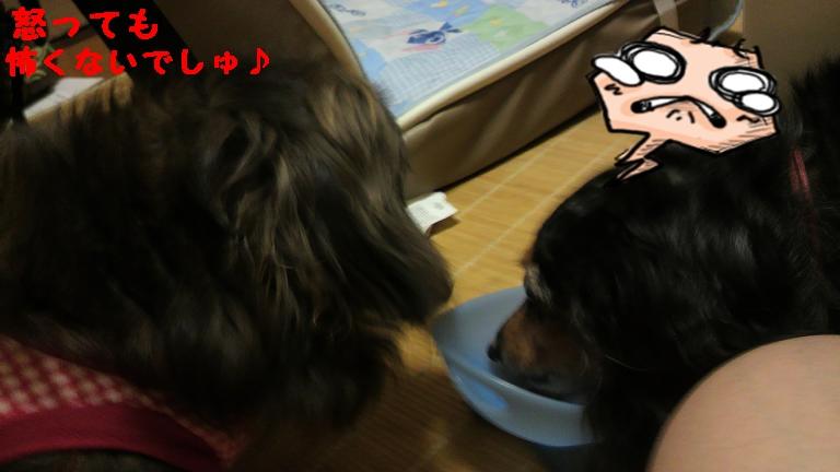 怒る (3)