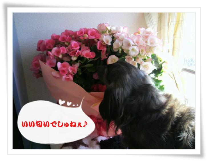 2011032709470001.jpg