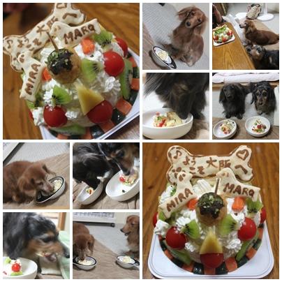 cats_20100927130652.jpg