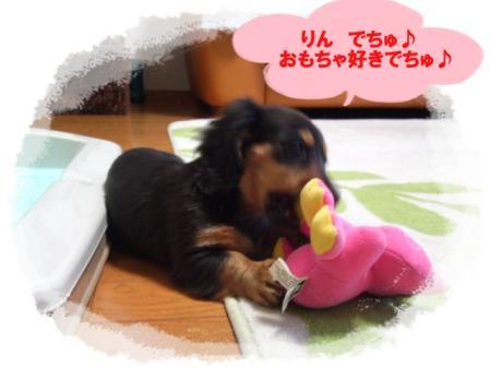 mini_110207_0703.jpg