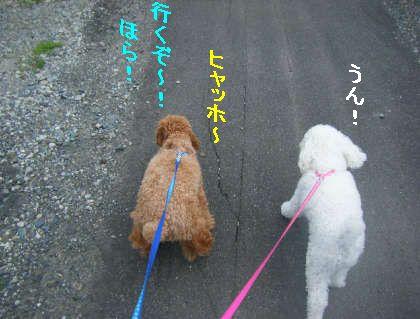 2008_09060023.jpg