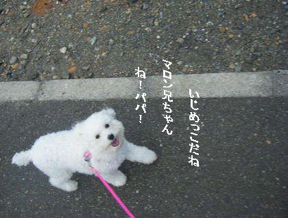 2008_09060039.jpg
