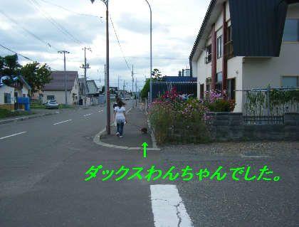 2008_09060045.jpg