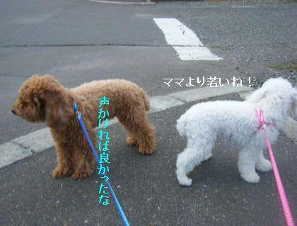 2008_09060047.jpg