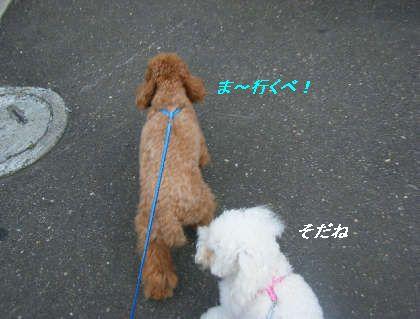 2008_09060049.jpg