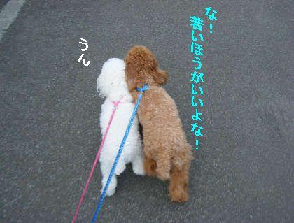 2008_09060057.jpg