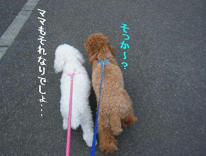 2008_09060058.jpg