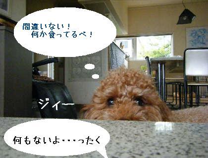 2008_09070032.jpg