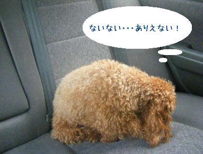 2008_09130014.jpg