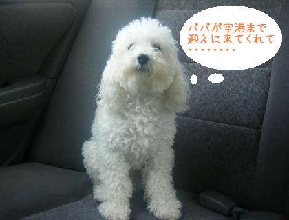 2008_09130032.jpg