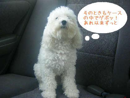 2008_09130033.jpg