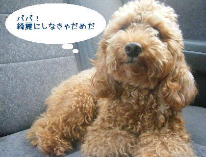 2008_09130049.jpg
