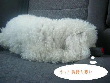 2008_09130053.jpg