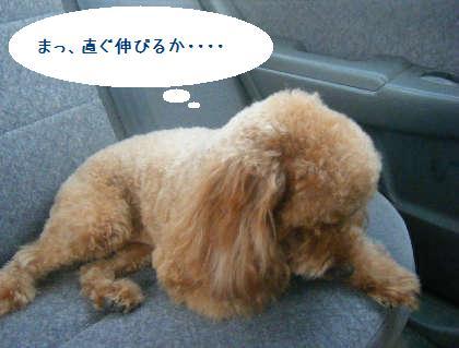 2008_09130068.jpg