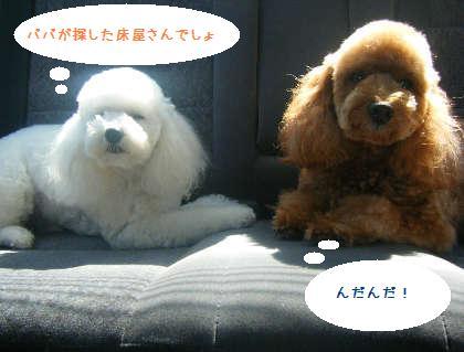 2008_09130080.jpg