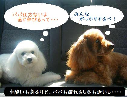 2008_09130087.jpg