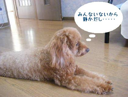 2008_09130109.jpg