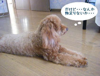 2008_09130111.jpg