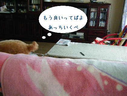 2008_09140005.jpg