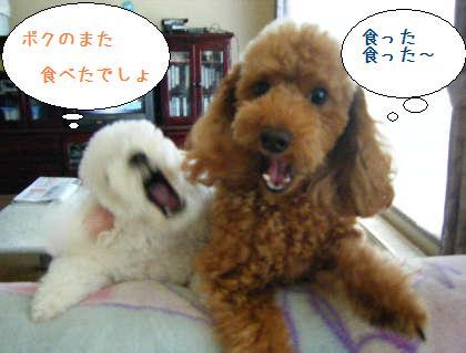 2008_09140013.jpg
