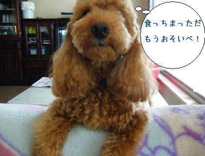 2008_09140015.jpg