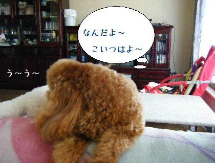 2008_09140017.jpg