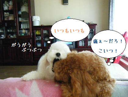 2008_09140018.jpg
