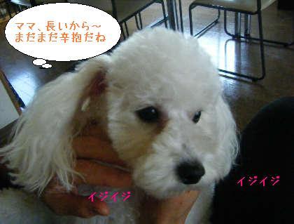 2008_09140029.jpg