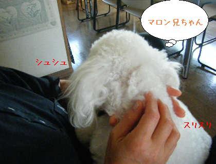 2008_09140032.jpg