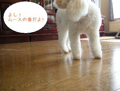 2008_09200009.jpg