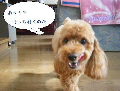 2008_09200030.jpg