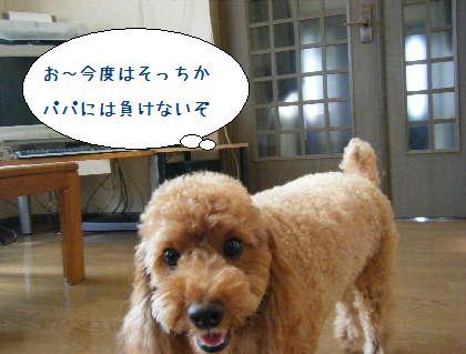 2008_09200032.jpg