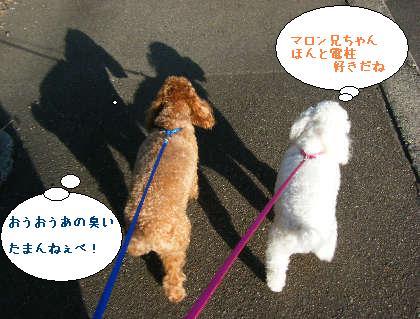 2008_09200102.jpg