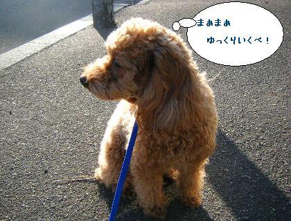 2008_09200113.jpg