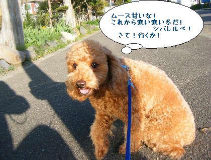 2008_09200121.jpg