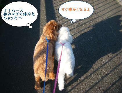 2008_09200127.jpg