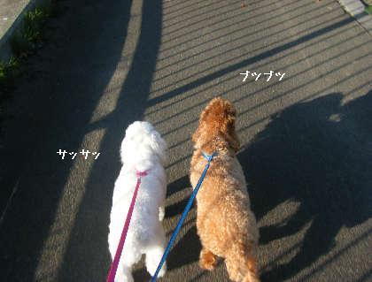 2008_09200131.jpg