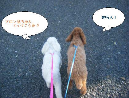 2008_09200136.jpg