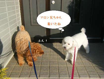 2008_09200140.jpg