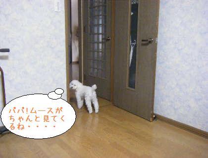2008_09210008.jpg