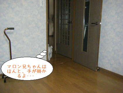 2008_09210009.jpg