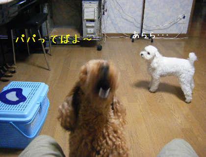 2008_09250008.jpg